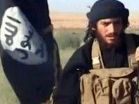 IŞİD'in Sözcüsü el-Adnani Halep'te Öldürüldü