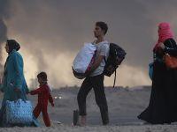 """""""Musul Çevresindeki Bölgelerden 3 Bin 802 Kişi Göç Etti"""""""