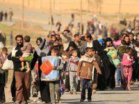Musul'dan Göç Edenlerin Sayısı 80 Bine Yaklaştı