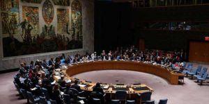 Afrika Birliği, BM'den Veto Hakkı İstiyor