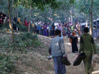 Myanmar Ordusu Arakanlılara Ait Bin 500 Binayı Yaktı