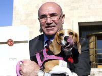 """Mahmut Tanal, """"Meclis'te Köpek İstemiyoruz!""""u Yanlış Anlamış"""
