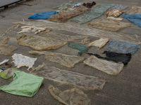 Karaya Vuran Balinanın Midesinden 30 Plastik Torba Çıktı!