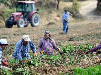 Türkiye Nüfusunun Sadece Yüzde 8'i Köyde Yaşıyor