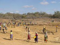 """Kenya'da Kuraklık Nedeniyle """"Ulusal Afet"""" İlan Edildi"""