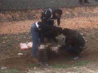 Diyarbakır'da Newroz Alanında Polisin 'Dur' Emrine UymayanKişi Vurularak Öldürüldü