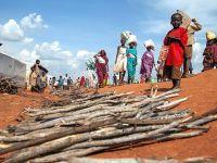 BM Dünya Gıda Programı'ndan Güney Sudan'a Gıda Yardımı