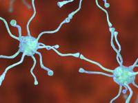 """""""Parkinson Tedavisinde Umut Vaat Eden Bir Yöntem Bulundu"""""""