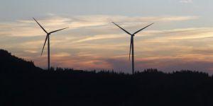 Rüzgar YEKA İhalesini Siemens -Türkerler- Kalyon Grubu Kazandı