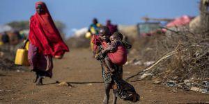 'Karanlık Kıta' İmajı ile İşbirliği Yürümez