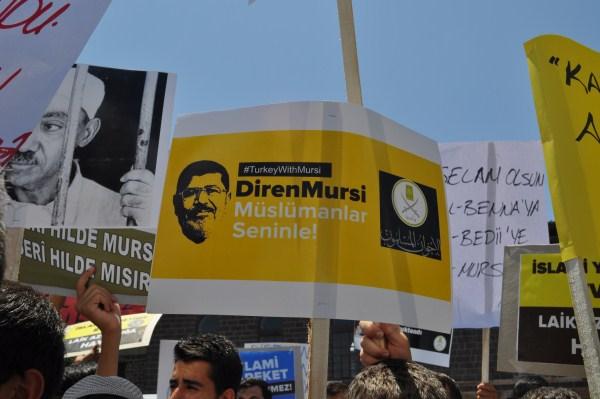 20130705-diyarbakir-misir-07.jpg
