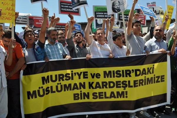 20130705-diyarbakir-misir-09.jpg