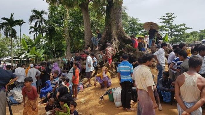 bangladese_kacan_arakanli_muslumanlar_7.jpg