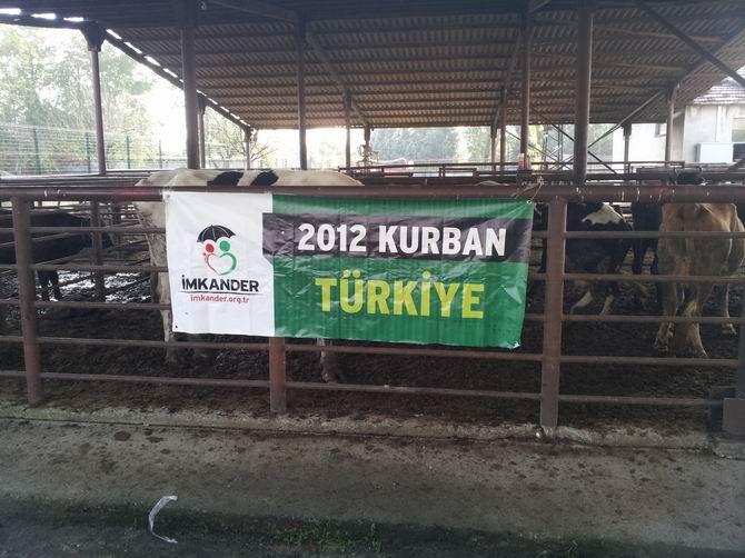 imkander-201211-01-6.jpg