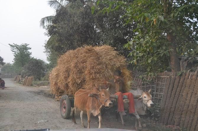 nepal3-20140430-03.jpg