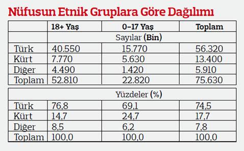 nufus-etnik-gruplar-2013.jpeg