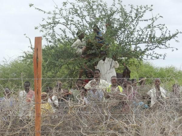 sediyani-20111115-08.jpg
