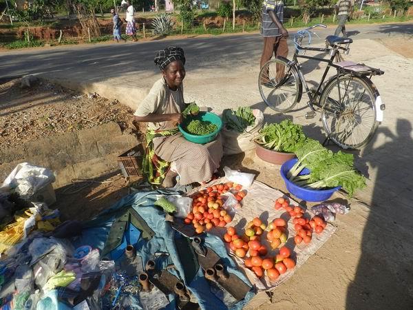 sediyani-20111115-25.jpg