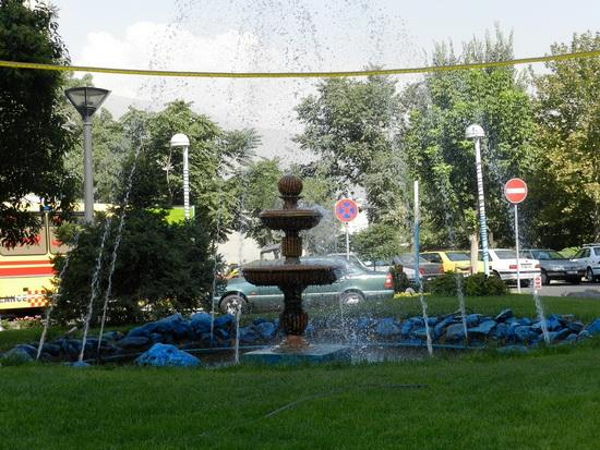 sediyani-20111219-16.jpg