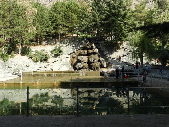 sediyani-2012-12824.jpg