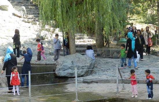 sediyani-2012-12826.jpg