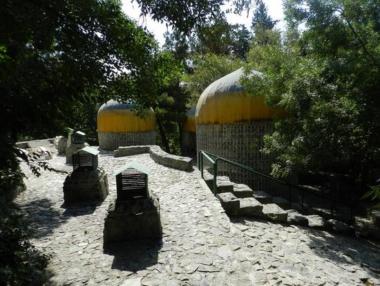 sediyani-2012-12831.jpg